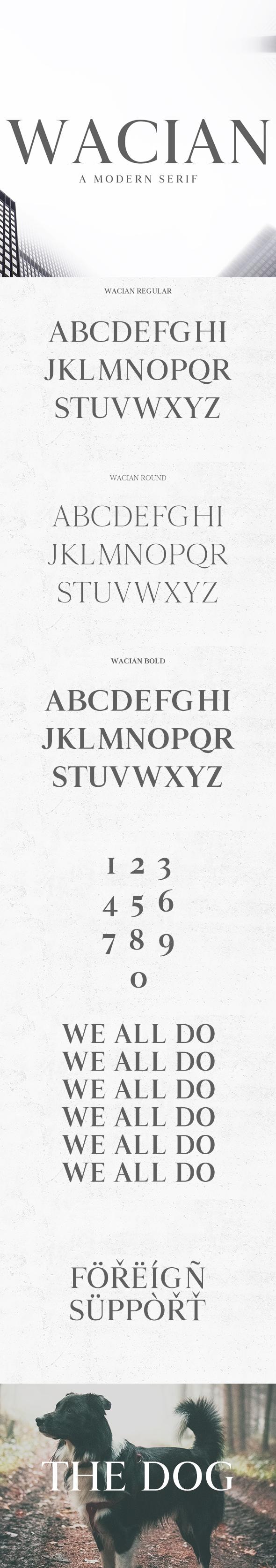 Wacian Serif Font Family - Serif Fonts