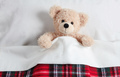 Cute teddy covered with a warm blanket, laying in bed - PhotoDune Item for Sale