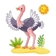 Ostrich Stands on the Meadow - GraphicRiver Item for Sale