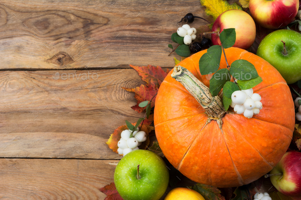 Rustic greeting with pumpkin, white berries, copy space - Stock Photo - Images