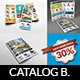Supermarket Catalog Brochure Bundle Template Vol.5 - GraphicRiver Item for Sale