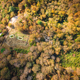 Free Download Autumn seen from above Nulled