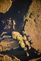 Swampy area of Lake di Porta - PhotoDune Item for Sale