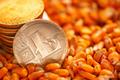 Litecoin on top of corn kernels heap - PhotoDune Item for Sale