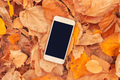 White smartphone on colorful autumnal leaves background - PhotoDune Item for Sale