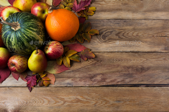 Fallc background with green pumpkin and onion squash - Stock Photo - Images