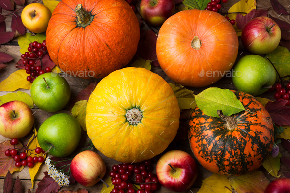 Fall background with yellow pumpkin and viburnum - Stock Photo - Images