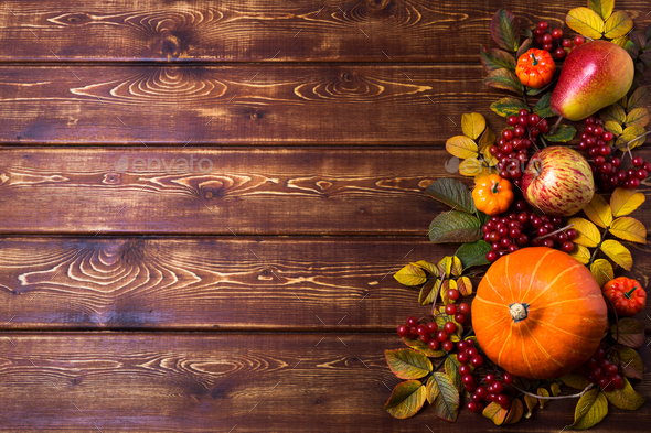 Thanksgiving rustic frame with pumpkins, copy space - Stock Photo - Images