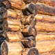 Free Download wooden wall closeup from log house Nulled