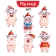 Free Download Vector Set of Christmas Pig Characters Set 2 Nulled