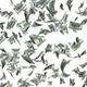 Money Rain Falling  Dollars - VideoHive Item for Sale