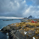 Clif with traditional red rorbu house on Lofoten Islands, Norway - PhotoDune Item for Sale