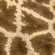 Giraffe pattern close up - PhotoDune Item for Sale