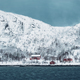 Free Download Red rorbu houses in Norway in winter Nulled