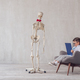 Human skeleton at the office - PhotoDune Item for Sale