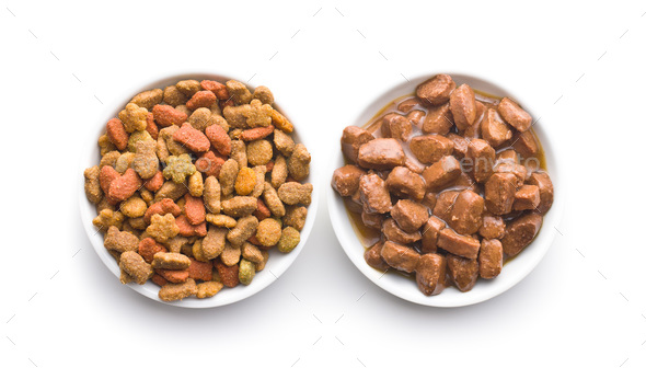 Meal for dog or cat. Canned meat with sauce. - Stock Photo - Images