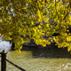 Sidewalk by Spree river on a sunny day in Berlin, Germany, wallpaper. - PhotoDune Item for Sale