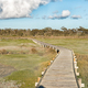 View from the boardwalk to the Geelbek Bird Hide - PhotoDune Item for Sale