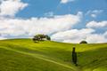 Strzelecki Ranges Landscape - PhotoDune Item for Sale