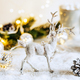 Christmas background with reindeer - PhotoDune Item for Sale