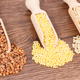 Free Download Buckwheat, millet groats and brown rice with scoop, healthy and gluten free food Nulled