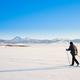 Cross-country skier skiing Lake Laberge Yukon Canada - PhotoDune Item for Sale