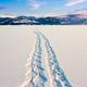 Lake Laberge snowshoe tracks Yukon Canada - PhotoDune Item for Sale