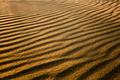 Golden Sand - PhotoDune Item for Sale
