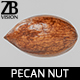 Pecan 003 - 3DOcean Item for Sale