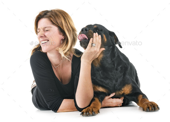 rottweiler and woman - Stock Photo - Images