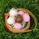 Free Download Decorated Eggs for Easter Nulled