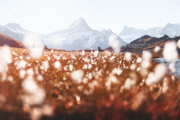 Picturesque view on Bachalpsee lake in Swiss Alps mountains - Stock Photo - Images