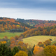 Free Download Fall forest Eifel landscape Germany Europe Nulled