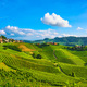 Langhe vineyards sunset panorama, Serralunga Alba, Piedmont, Ita - PhotoDune Item for Sale