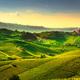 Langhe vineyards sunset panorama, Castiglione Falletto, Piedmont - PhotoDune Item for Sale