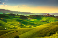 Langhe vineyards sunset panorama, Castiglione Falletto, Piedmont - PhotoDune Item for Sale