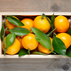Mandarins in wooden box top view - PhotoDune Item for Sale