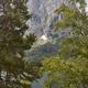Aigues tortes national park forest landscape. Sant Maurici. Spain - PhotoDune Item for Sale