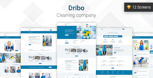 Dribo — Cleaning company Sketch Template