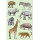 Set of African Animals - GraphicRiver Item for Sale