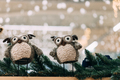 two cute toy owl on fir branch. winter still life with two toy owl - PhotoDune Item for Sale