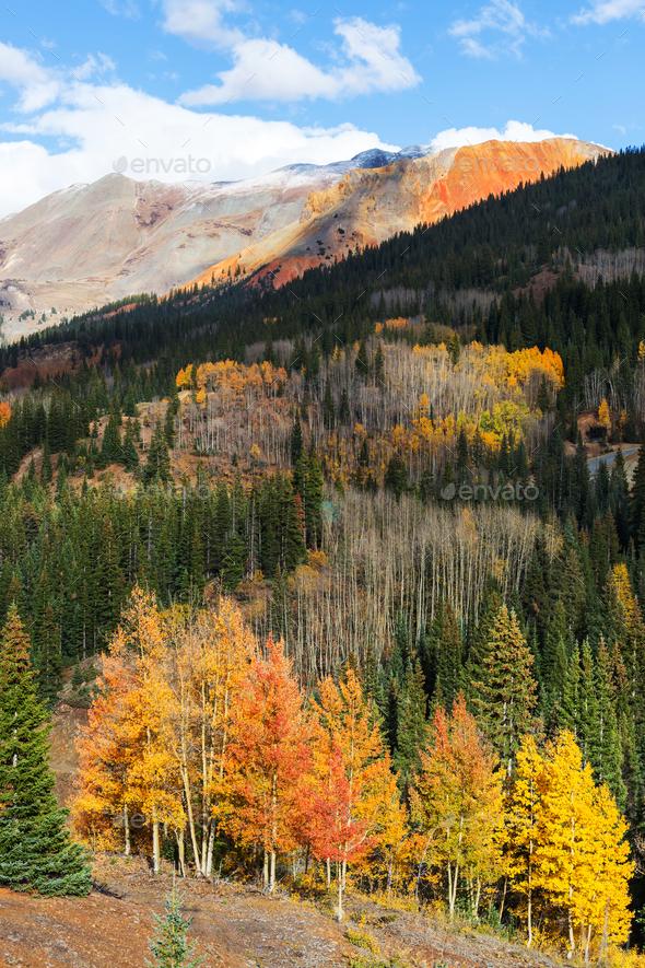 Autumn in Colorado - Stock Photo - Images