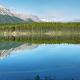 Free Download Herbert lake panorama Nulled