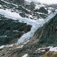 Free Download Angel Glacier in Jasper national park Nulled