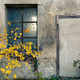 Free Download Abandoned warehouse entrance on concrete wall, facade with windo Nulled