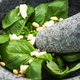 Free Download Basil pesto with pine nuts in granite mortar Nulled