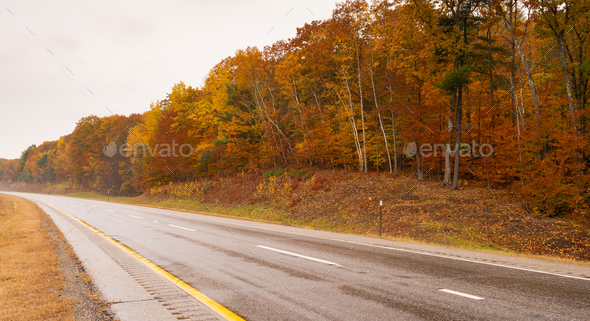 Rural Landscape Country Road Highway Fall Autumn Season Leaves  - Stock Photo - Images