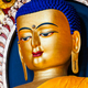 Free Download Sakyamuni Buddha statue Nulled
