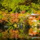 Beautiful Daigoji temple with colorful tree and leaf in autumn s - PhotoDune Item for Sale