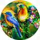 SkybirdSoundStudio